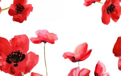 E-News – ANZAC Day 2020 Special Edition